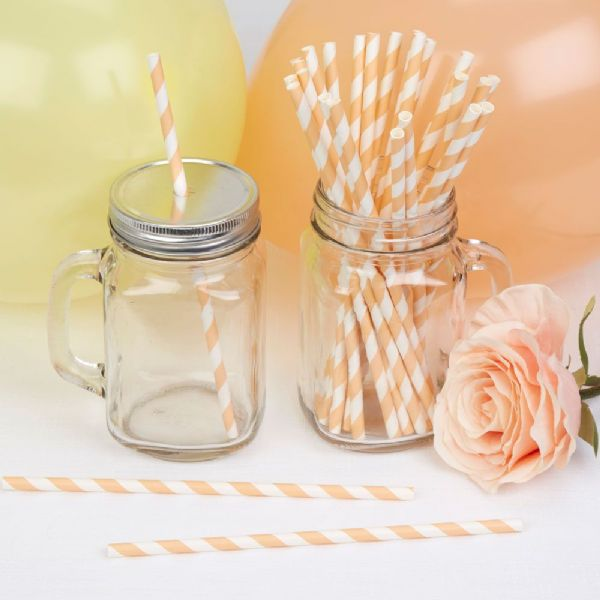 Llama Love Peach Stripes Paper Straws (25)